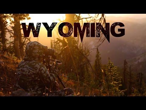 Wyoming high country mule deer 2016