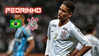 Pedrinho 2018-2019 - Corinthians - Crazy Skills Show