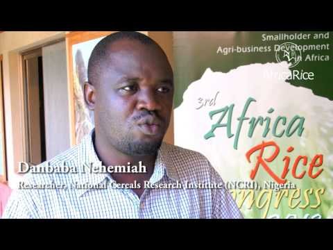 3rd Africa Rice Congress Expectations :  Dr Danbaba Nehemiah