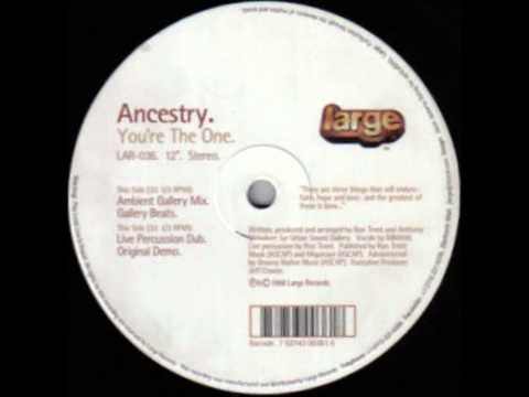 Ancestry - You're The One