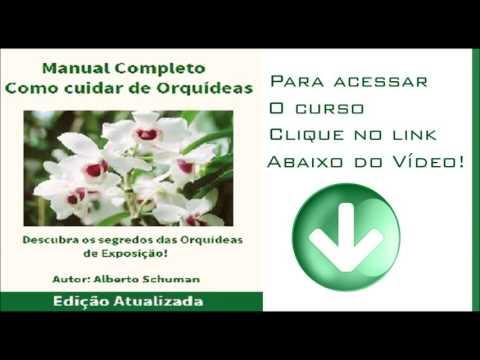 MANUAL COMPLETO COMO CUIDAR DE ORQUÍDEAS - BONUS PDF