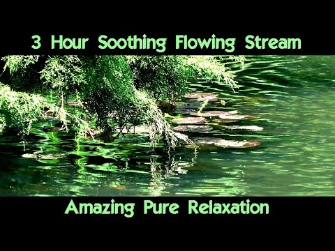 3 Hour Relaxing Nature Sounds, Countryside Stream, Birds, Water Sounds For Meditation Sleep Study