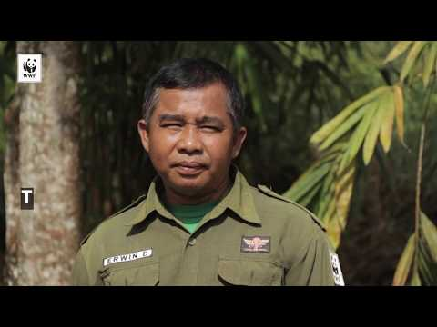 Meet the firefighters of Riau