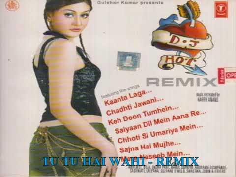 Tu Tu Hai Wahi Dil Ne Jise Apna Kaha   Remix   DJ Hot Remix