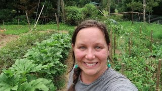 HOMESTEADING Made Me RICH!