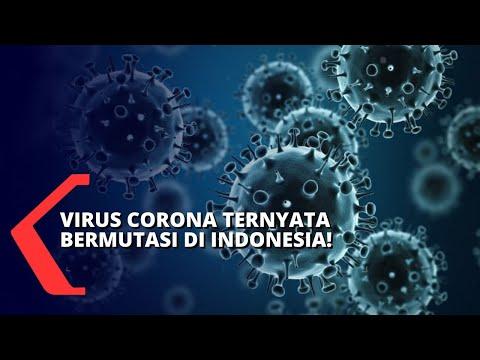 Mutasi Virus Corona D614g, Lebih Cepat Menginfeksi Sel Manusia