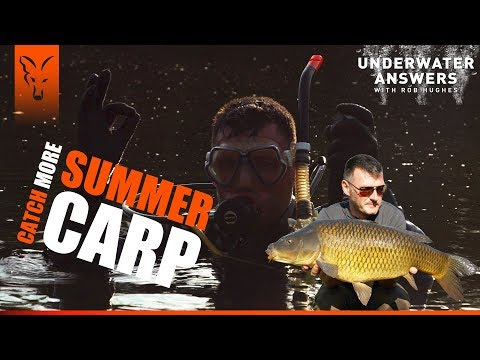 UNDERWATER ANSWERS: CATCH MORE SUMMER CARP