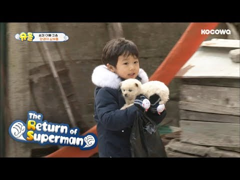 "SeungJae, ""I brought Puppy to play with Grandma"" [The return of superman Ep 216]"