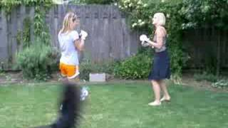 repeat youtube video backyard bbq brawl