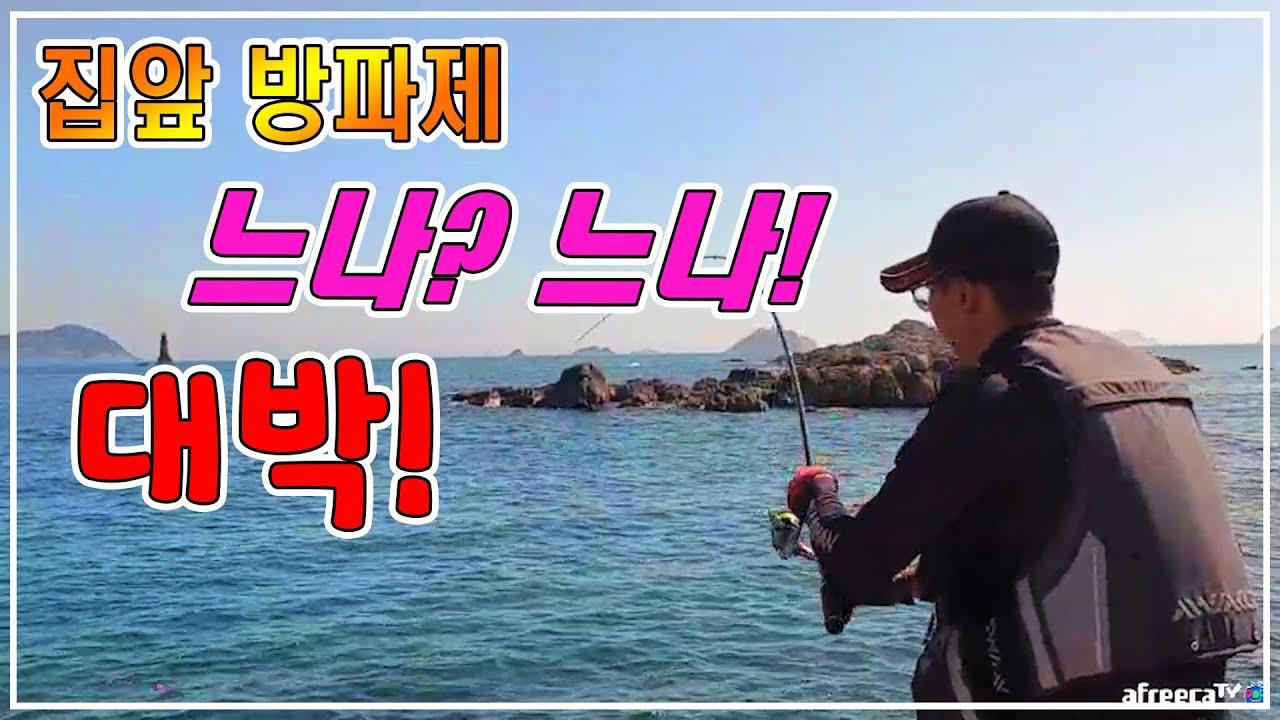 낚시) 집에서 걸어서1분 걸리는 방파제가 최고의 포인트다!! (fishing)