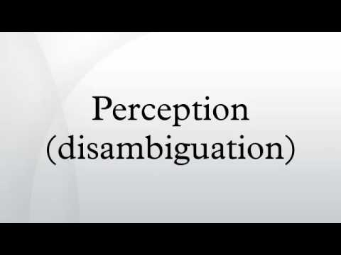 Perception (disambiguation) HD