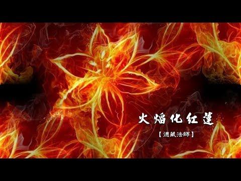 雜阿含617經-04.火焰化紅蓮【德藏法師】