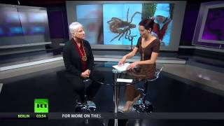 Why the Government is Suppressing the Lyme Disease Epidemic | Interview with Lorraine Johnson