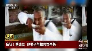 [今日亚洲]速览 疯狂!搏走红 印男子与蛇共饮牛奶| CCTV中文国际