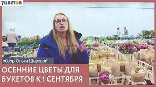 Цветы для букета на 1 сентября / Обзор поставки с Ольгой Шаровой