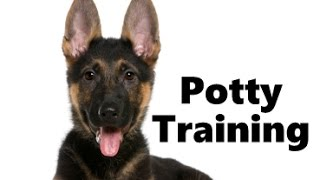 How To Potty Train A German Shepherd Puppy - German Shepherd Training Tips - German Shepherd Puppies