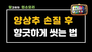 """""""샐러드야채 양상추 준비"""" 양상추손질…"""