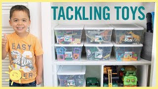 ORGANIZE | Tackling the Toys!