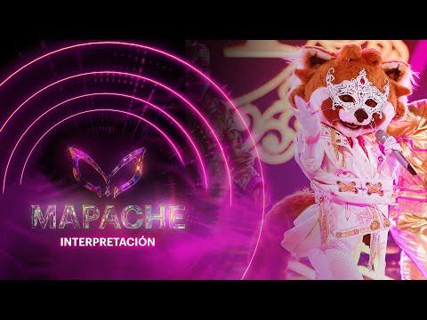 #MapacheEs ¡Juanpa Zurita y Carlos Rivera se disputan el beso de Mapache!   Interpretación