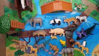 Learn zoo animal with Tomica animal figure