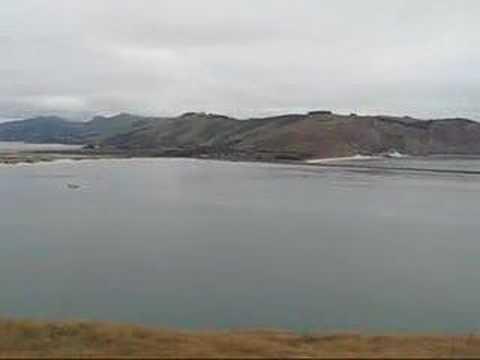 Dunedin et Otago Peninsula X
