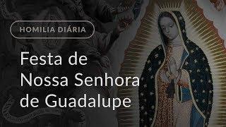 Festa de Nossa Senhora de Guadalupe, Padroeira das Américas (Homilia Diária.1028)