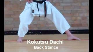 Karate Stances Basic Shotokan Stances Kokutsu Dachi - Back Stance
