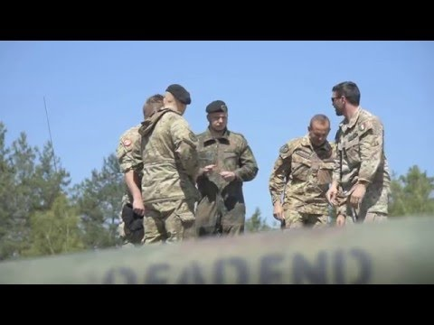 Multinational platoons compete in Strong Europe Tank Challenge