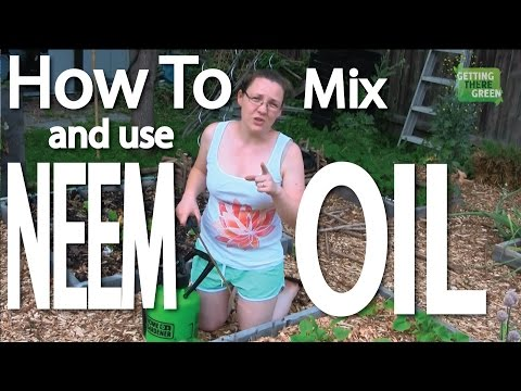 How To Mix And Use Neem Oil From Concentrate
