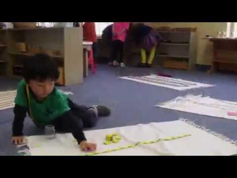 Montessori Academy of Cincinnati, Mason OH