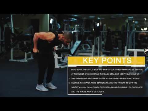 Bent over triceps kickbacks