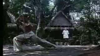 karate tiger 3: kickboxer training
