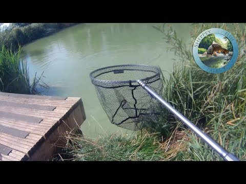 Greys GX Landing Net Review