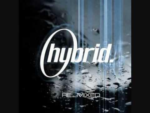 Hybrid - Live angle