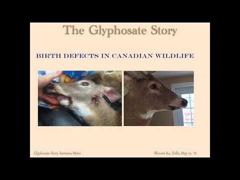 Delhi Talk on Glyphosate