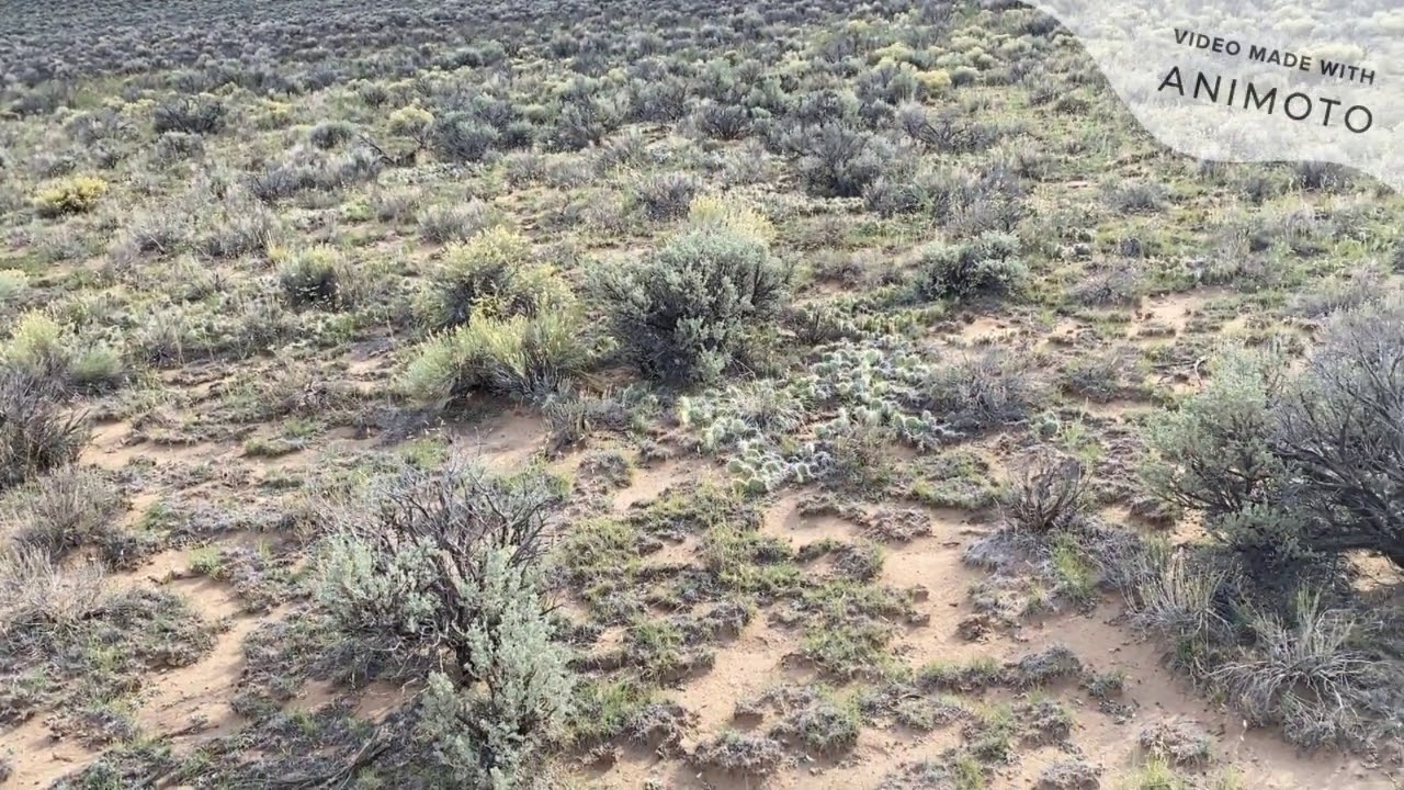 Prestigious 2.75 acres Residential Lot for Sale in Costilla, CO