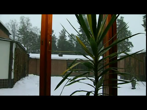 Alvaro Aalto - The Community Center of Säynätsalo Finland