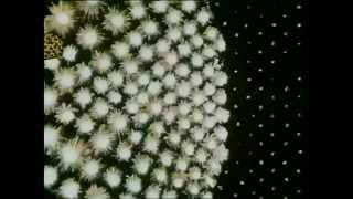 Generationals - Black Lemon (Official Lyric Video)