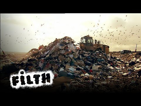 Where Does The Rubbish Go?
