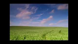 Jason Aldean; Fly Over States [ON-SCREEN LYRICS]