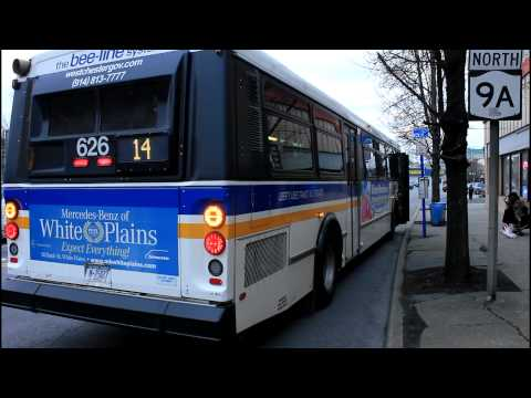 bee-line-bus:-small-action-at-elmsford-square-(saw-mill-river-rd-&-ny-119)