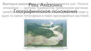 Географическое положение реки Амазонки