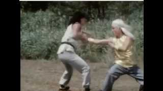 Secret of shaolin kung fu - Final fight scene