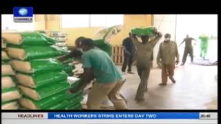 BOI Weekly: Rice production a tunnel of opportunities for Nigeria pt.2