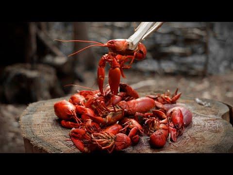Catch, Cook And EAT - INVASIVE SPECIES   Episode 1