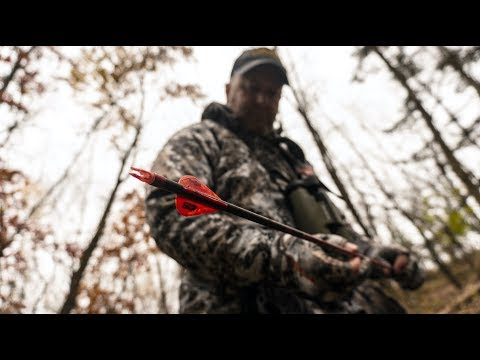 2017 Whitetail Rut Forecast by Jeff Sturgis