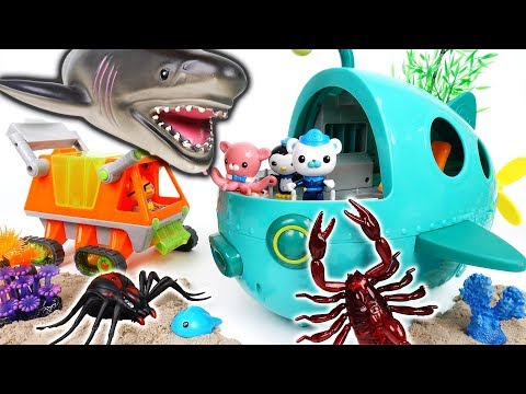 Thumbnail: Octonauts and The Sea Monsters~! Go Octonauts Midnight Zone GUP A