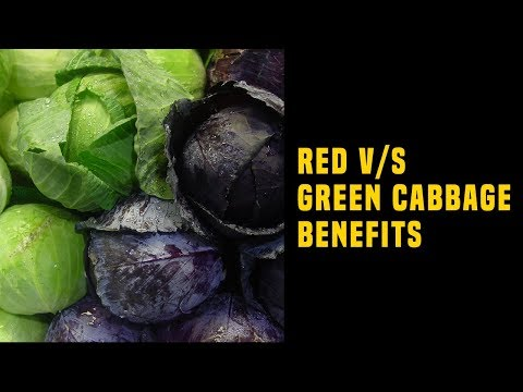Red V/S Green Cabbage Benefits