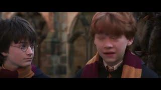 Potter Pops - Episode 21: Mad 'n Hairy?