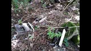 Super Rare Digital PDP-11/03-L and an RX02 Computers rotting in woods